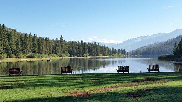 Hume Lake, California, Sequoia, Landscape, Outdoor