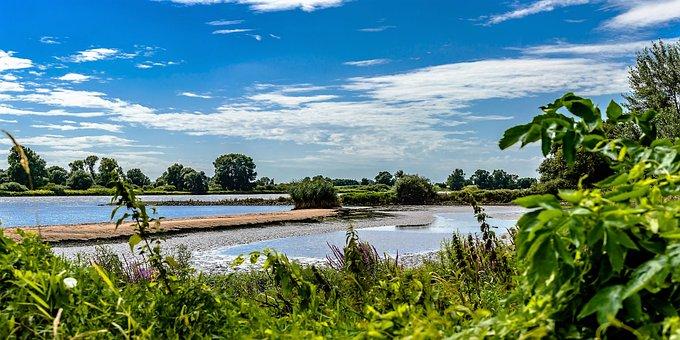 Elbe, Dike, River, River Landscape, Hamburg, Water