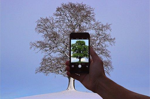 Mobile Phone, Hand, Summer, Winter, Photo Manipulation