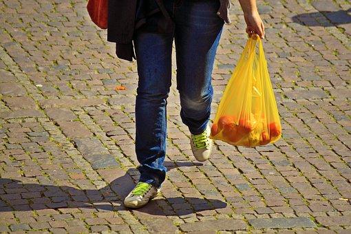 Shopping, Care, Bear, Market Shopping, Purchasing, Bag