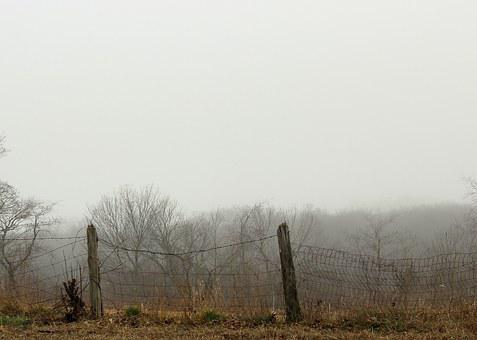 Rural, Country, Fence, Post, Wood, Wire, Fog, Mist