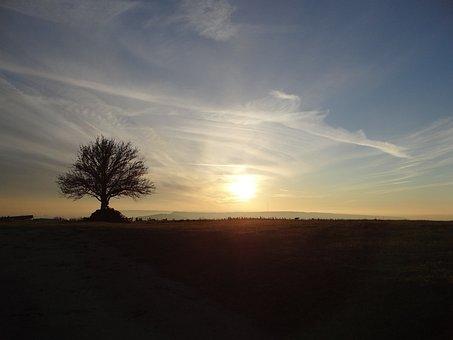 Field, Lorraine, Amance, Winter, Twilight, Evening