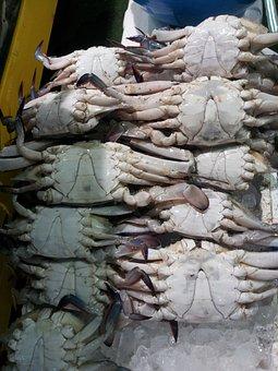 The Fish Market, Blue Crab, Fish
