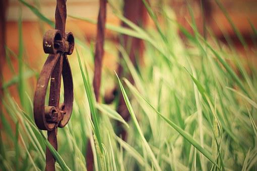 Old Iron Fence, Iron, Fence, Gate, Wrought, Old, Metal