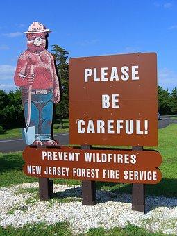 Smokey, Bear, Fire Prevention, New Jersey, Icon