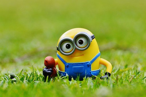Minion, Funny, Meadow, Bears, Cute, Toys, Children, Fig