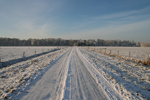 Frozen Road, Winter, Winter Trees, Steel Blue Sky