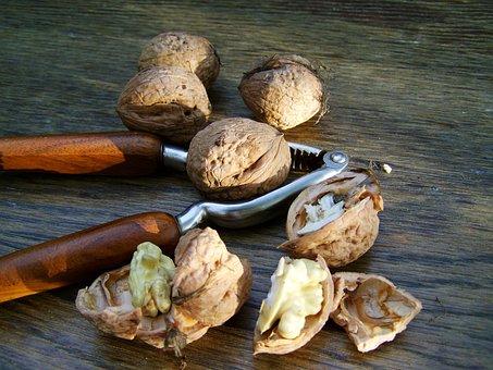 Walnut, Hard-shelled Fruits, Kernel