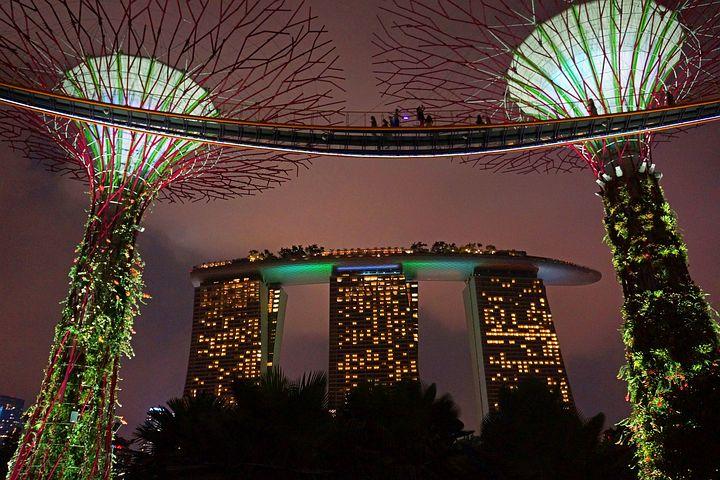 Marina Bay, Big Tree, Gardens By The Bay, Singapore