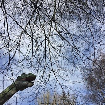 Dinosaur, Sky, Trees, Animal, Reptile, Nature