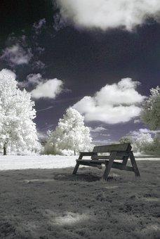 Infrared, Nature, Landscape, Surreal, Trees, Filter