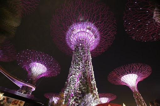 Supertree, Night, Singapore, Architecture, Light