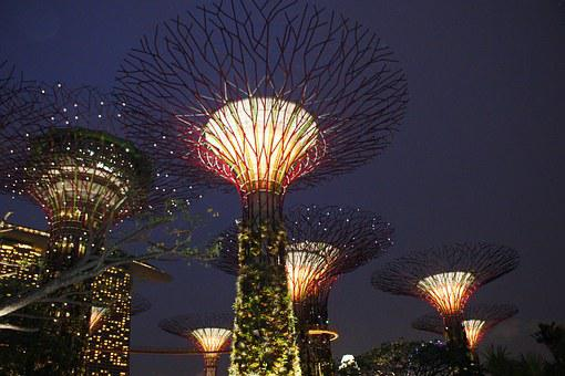 Singapore Garden By The Bay, Supertree, Singapore