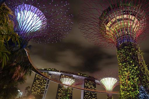 Supertree, Singapore, Garden By The Bay