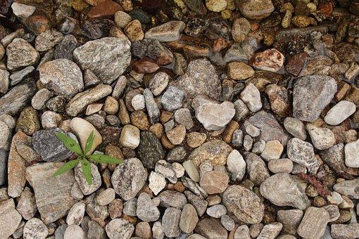 Gravel, Leaf, Pool, Valley, Background, Wipes, Floor