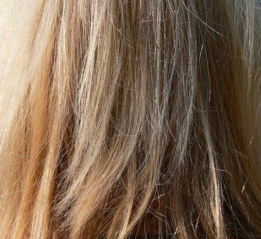 Hair, Blond, Long Hair, Wind, Close, Zerzauselt, Color