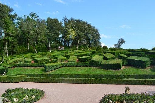 Boxwood, Bush Cut, Bushes Carved, Maze, Garden