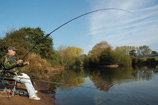 Fishing, Angling, Carp, Fisherman, Lake, Water, Rod