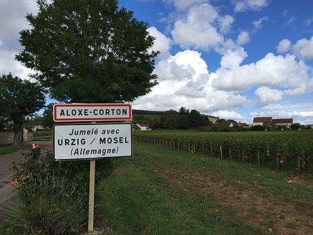 Burgundy, Wine, Corton, Vineyard, Chardonnay