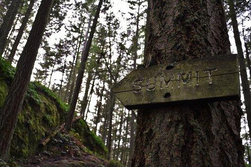 Hiking, Trail, Path, Marker, Climbing, Summit, Outdoors