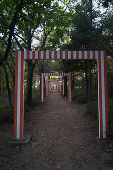 Maze, In The Forest, Gimpo Sculpture Park