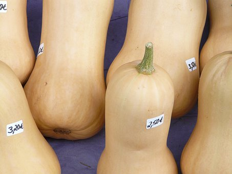 Pumpkin, Sale, Pear Pumpkin, Butter Nut Squash