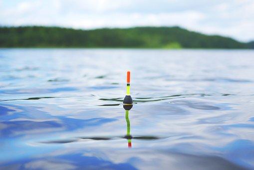 Lake, Fish, Swimmer, Pose, Water, Catch Fish