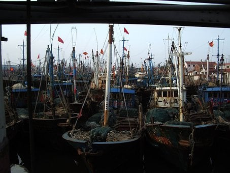 Boats, Fishing, Masts, Dock, Harbour, Vessel, Nautical