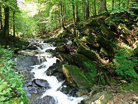 Waterfall, Brook, Rock, Water, Nature, Top View, Lake