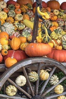 Pumpkins, Autumn, Orange, Yellow, Gourd, Decoration