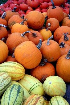 Pumpkin, Pumpkins, Red, Yellow, Color, Colorful, Autumn