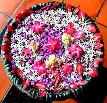 Flower, Rangoli, Water, Celebration, Indian
