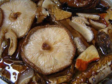 Mushroom, Shiitake, Fungus, Food, Brown, Healthy