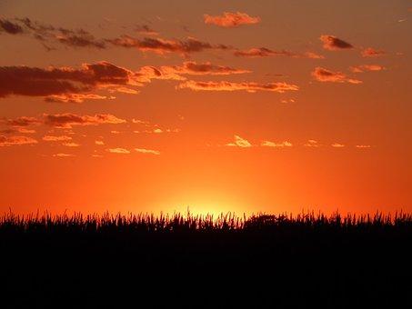 Sunset, Horizon, Midwest, Corn, American, Summer, Sky