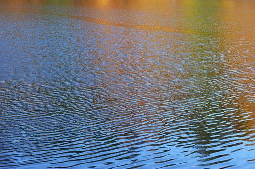 Water, Pond, Lake, Stream, Wave, Nature, Landscape