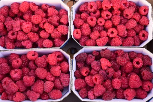 Raspberries, Berries, Fruits, Red, Fruit