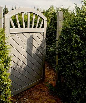 The Door, The Door To The Forest, Gate, Entrance, Tree