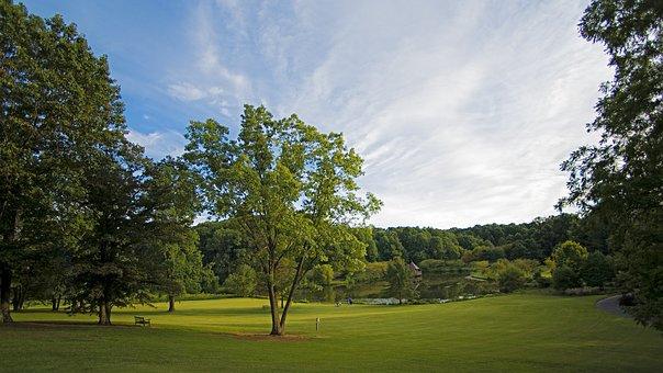 Summer, Virginia, Northern Virginia, Park, Green