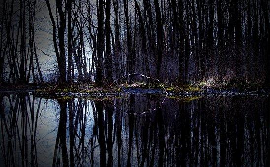 Czech Republic, Czech Budejovice, Water, Pond, Dark
