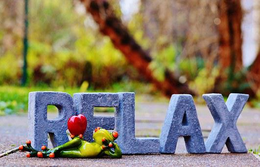 Relax, Frog, Rest, Concerns, Recovery, Favorite Place