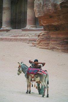Break, Donkey, Treasury, Khazne Firaun Al, Temple