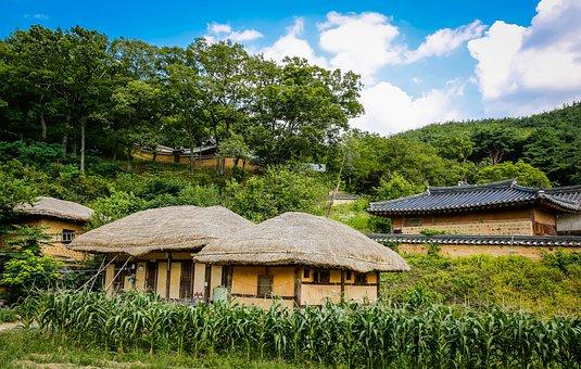 The Village, Neck, The World Gi, Long Lifetime