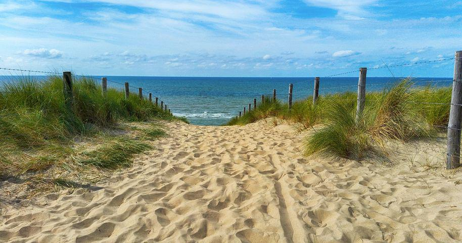 Sea, Dunes, Dune Grass, North Sea, Beach, Summer