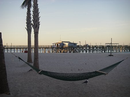 Hammock, Beach, Florida, Gulf Coast, Pier, Palm Trees