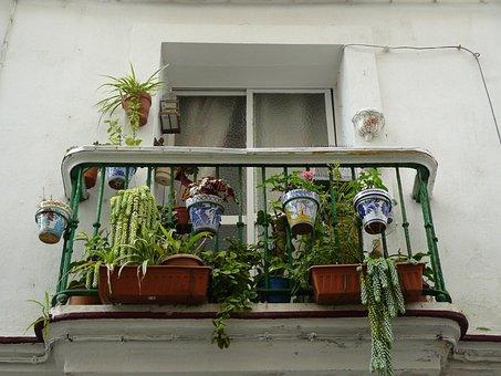 Balcony, Exterior Decoration, Hanging Basket