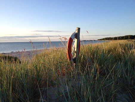 Lifebuoy, Reed, Oland, Böda, Beach, Dawn, Buoy, Water