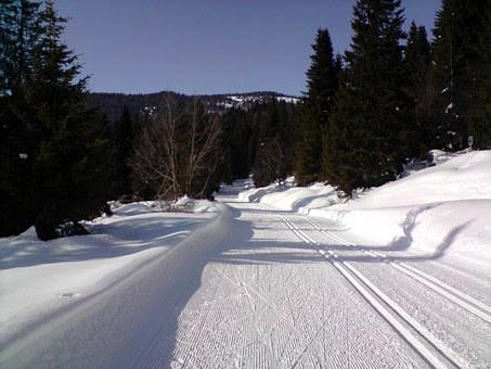 Ski Trails, Cross Country Skiing