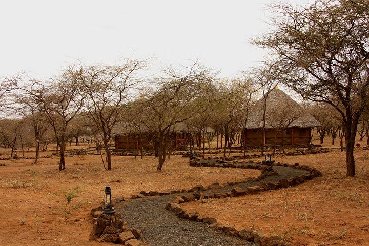 Safari, Camp, Tent, Lodge, Wildlife, Animals, Kenya