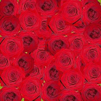 Roses, Nature, Flowers, Red, Digital Art