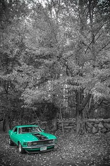 Mustang, Ford, Muscle, Car, Automobile, Vehicle